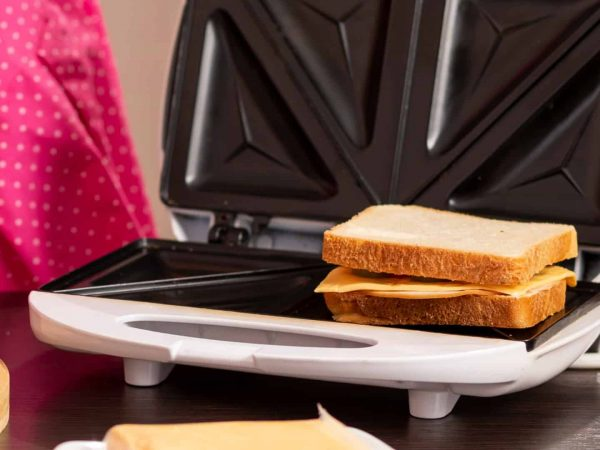 Best Sandwich Maker 2020: Shopping Guide & Review