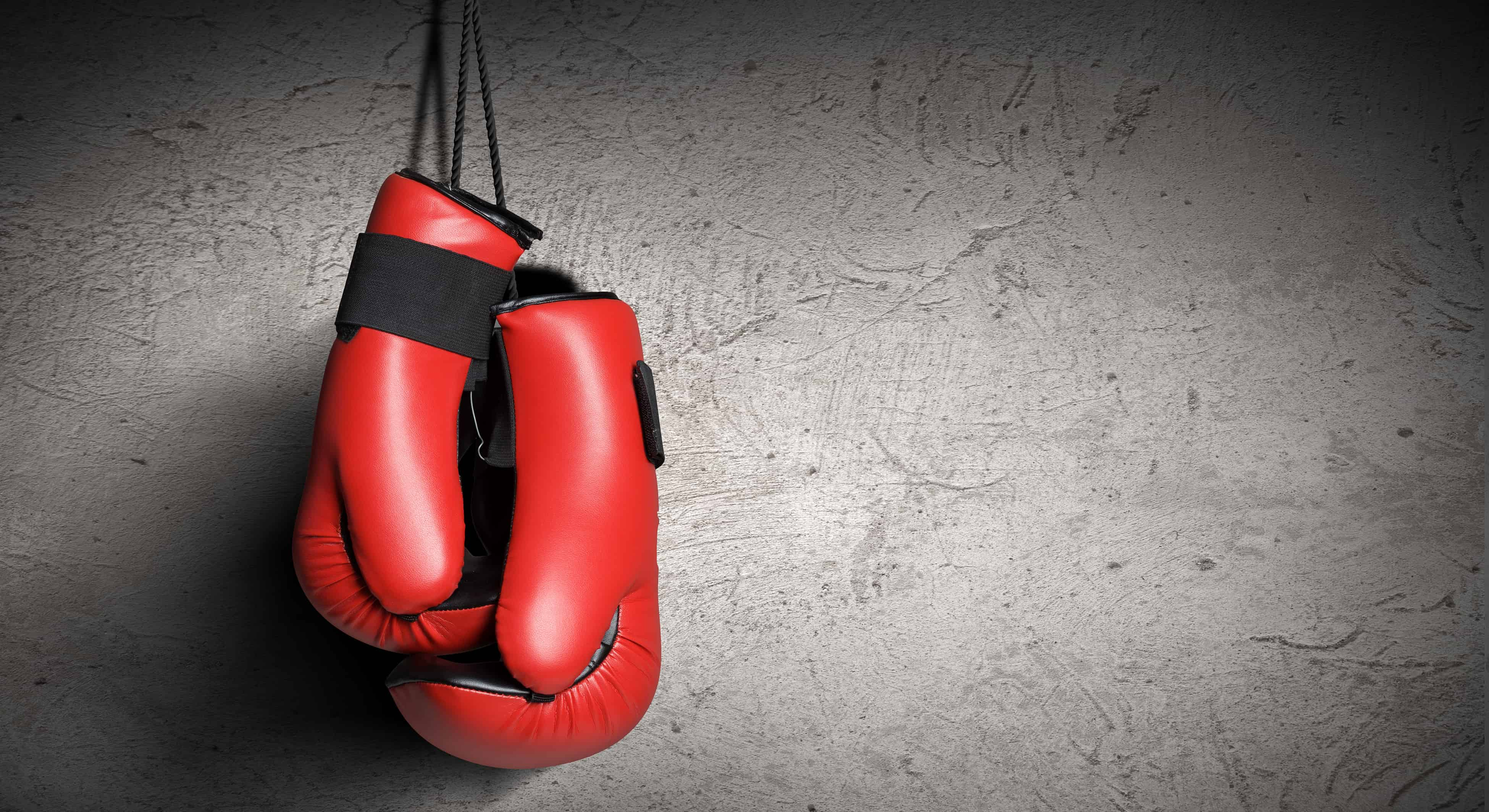 Best Boxing Gloves 2020: Shopping Guide & Review