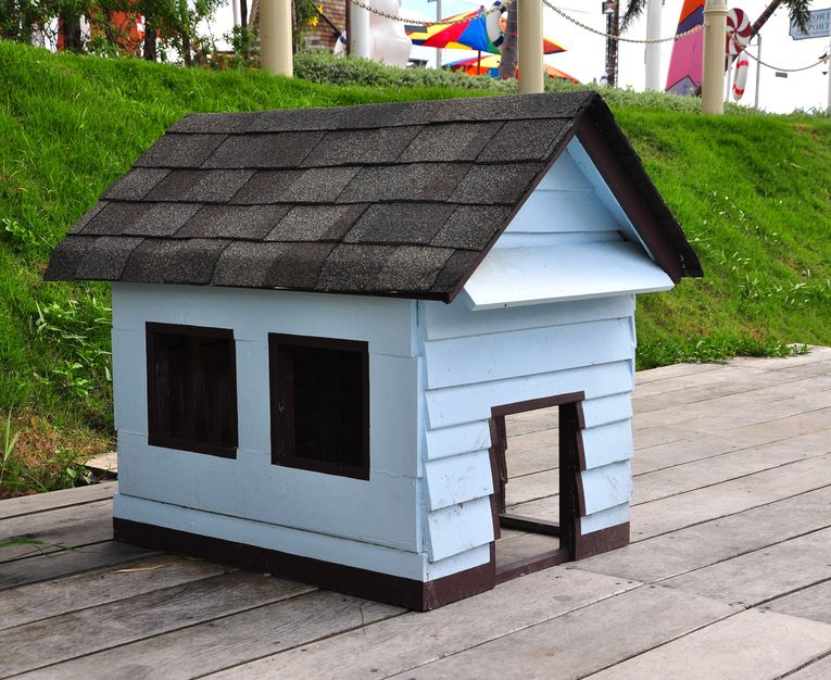 blue doghouse