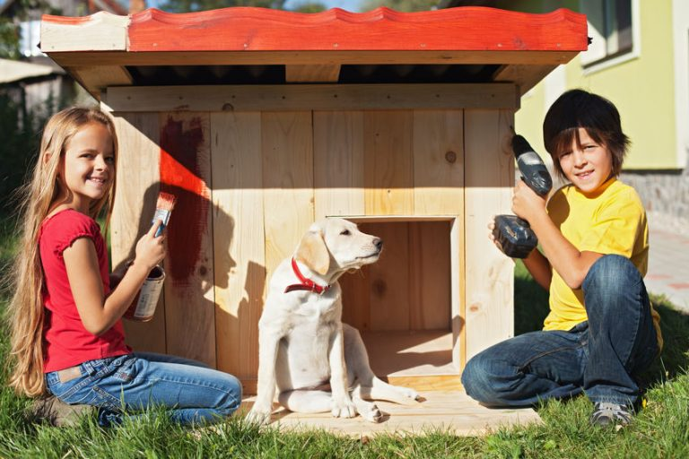 kid painting a doghouse