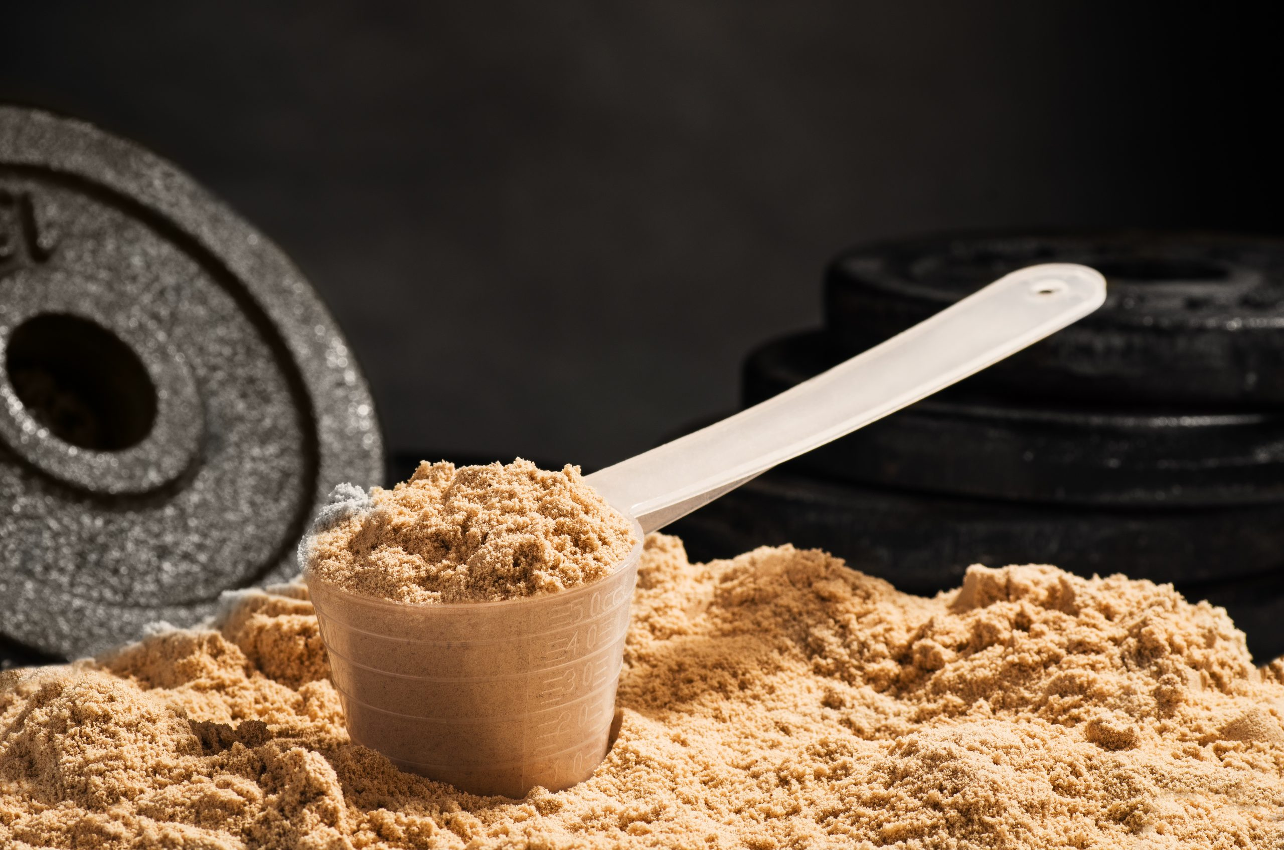 Scoop of whey protein on black background.