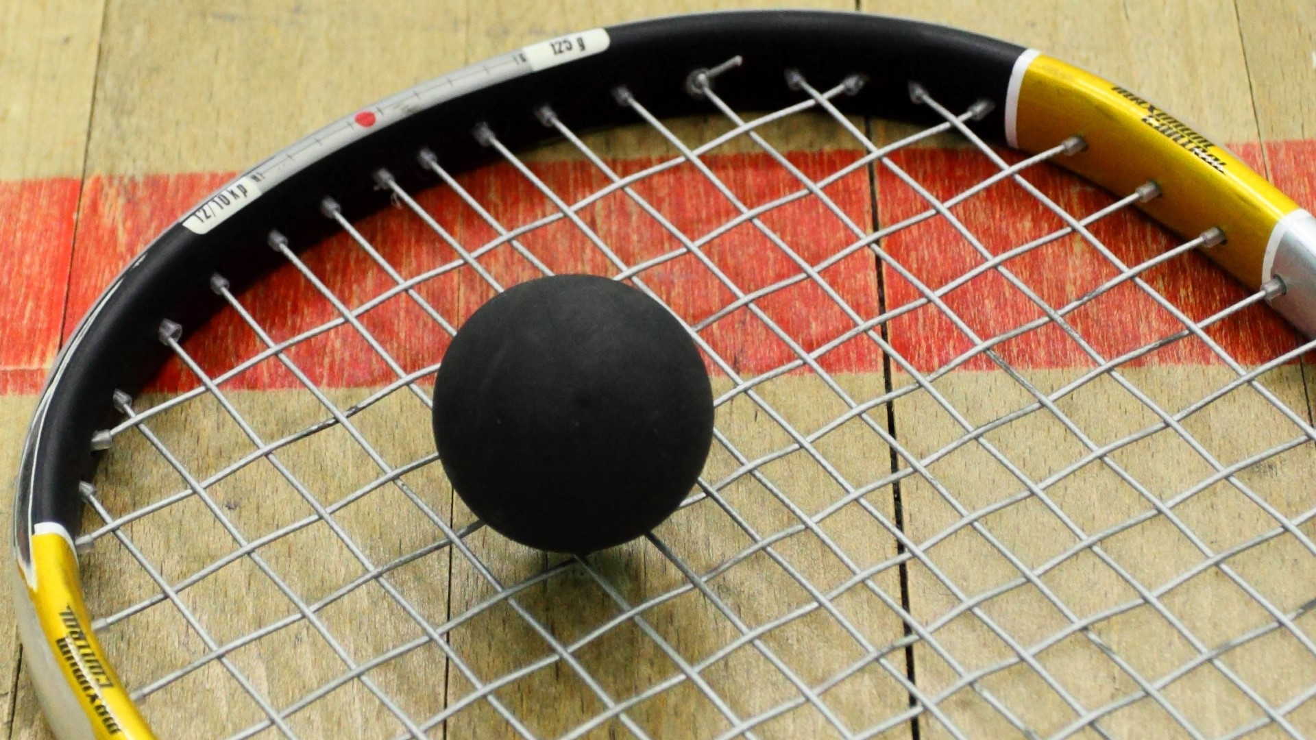 squash ball on a raquet