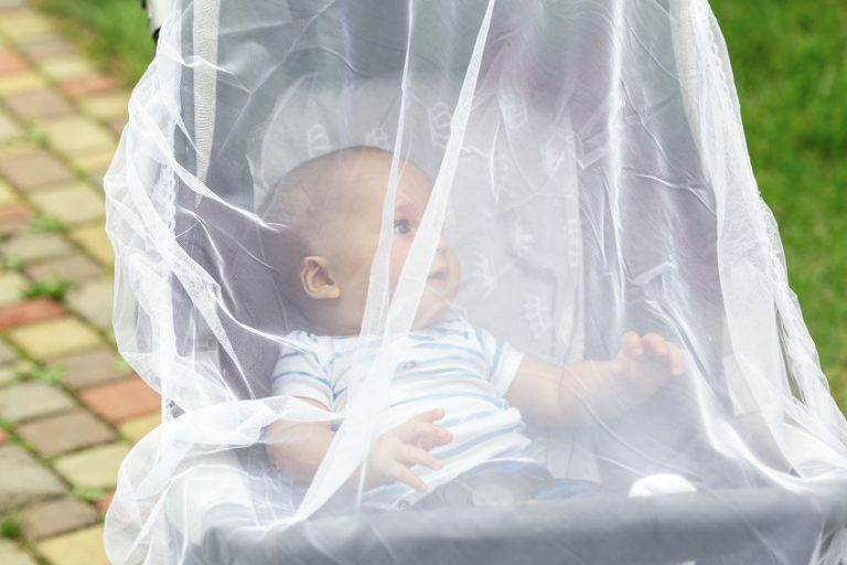 Child in stroller covered with protective net during walk. Baby carriage with anti-mosquito white cover. Midge protection for children during outdoor walking season