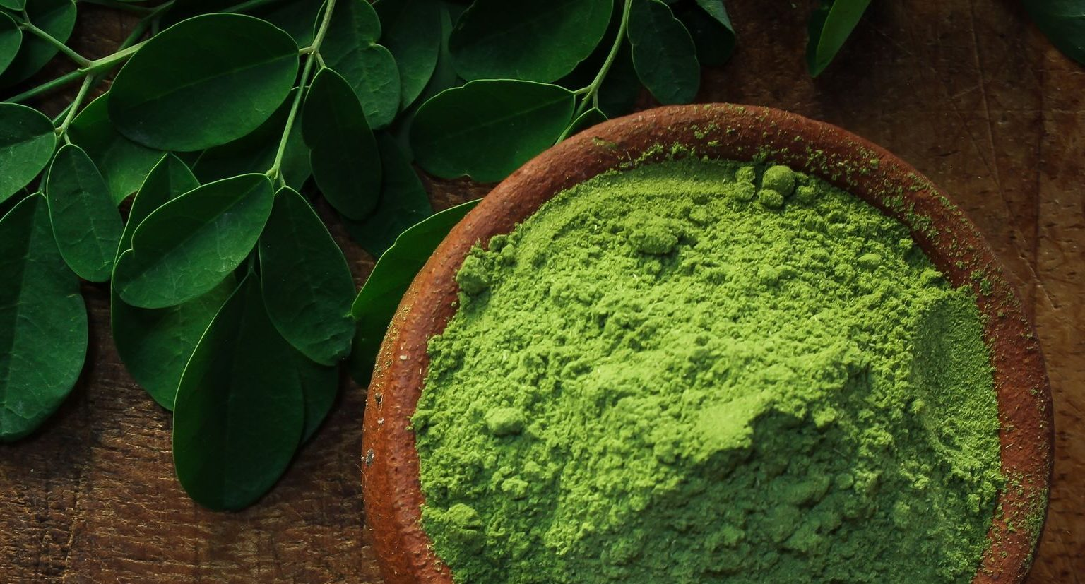 Best Moringa Product 2020: Shopping Guide & Review