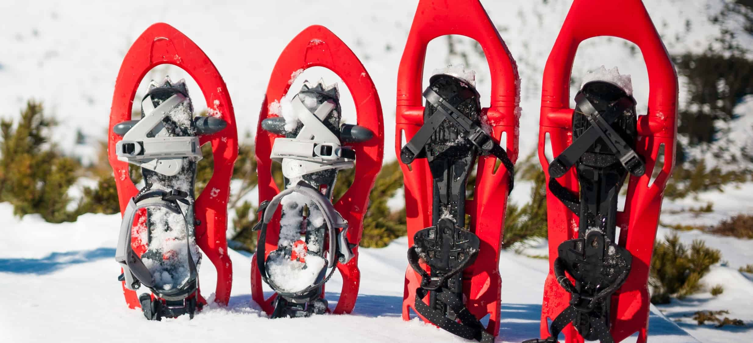 Best Snowshoes 2020: Shopping Guide & Review
