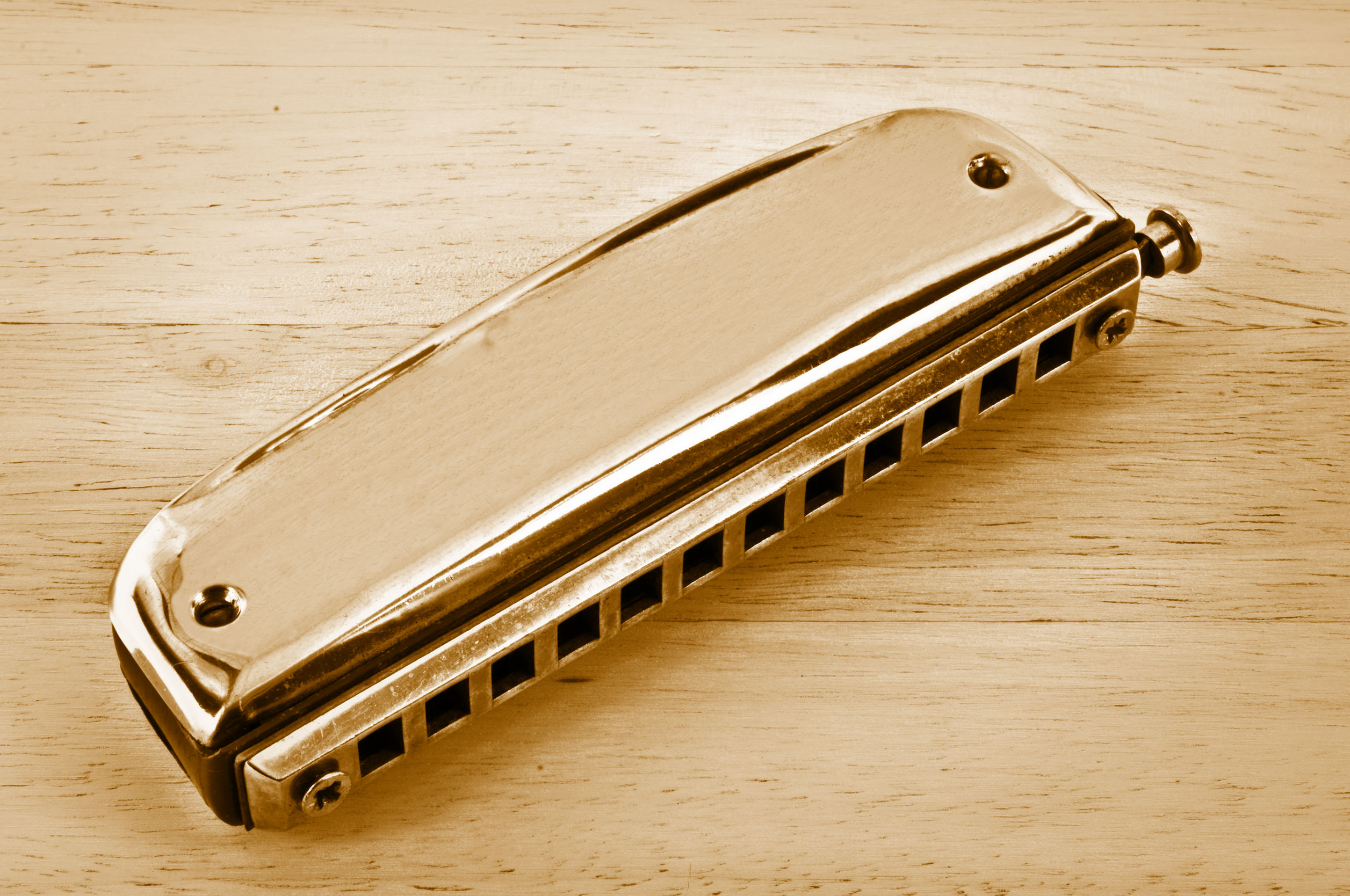 Best Harmonica 2020: Shopping Guide & Review