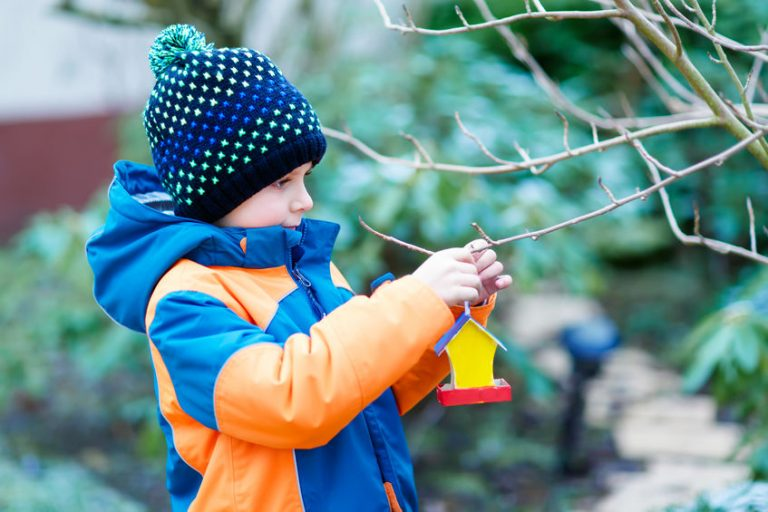 Little kid boy hanging bird house on tree for feeding in winter