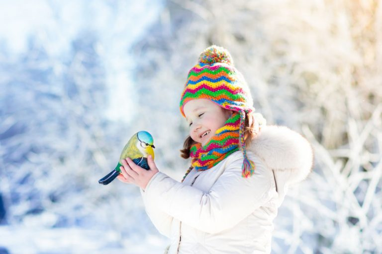Child feeding bird in winter park. Kids play in snow. Nature and